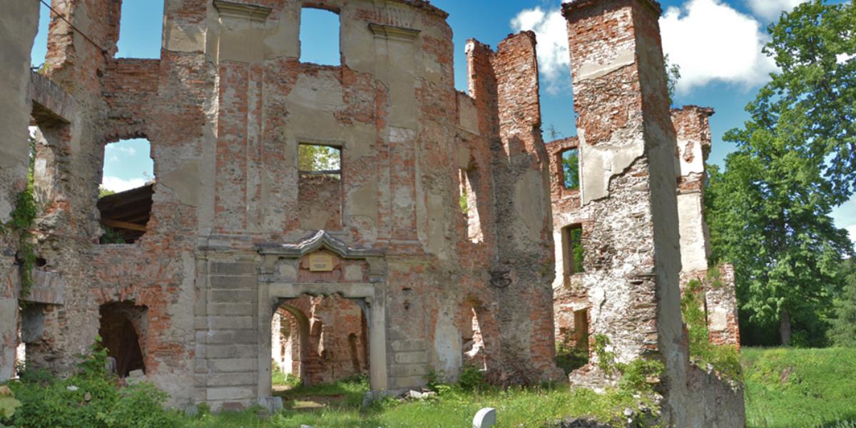 Ruiny pałacu w Owiesnie. 2013 r.