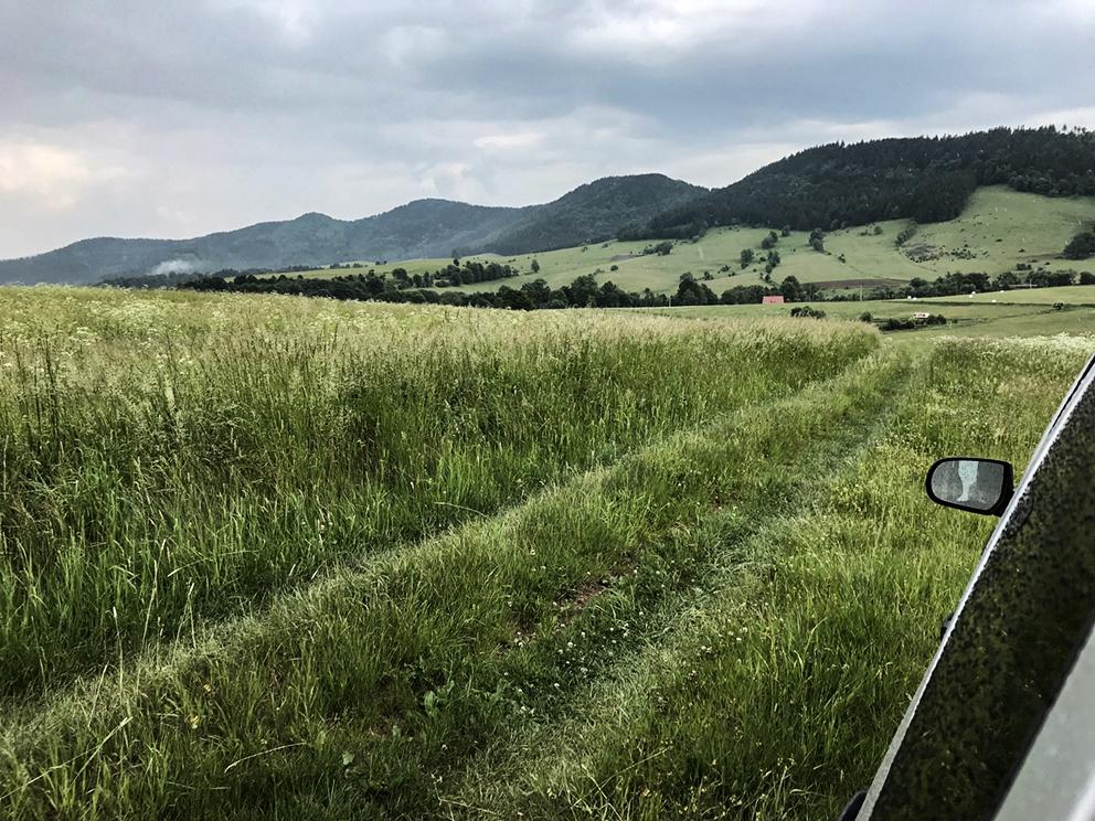 Okolice kamieniołomu, Rybnica Leśna. 2018 r.