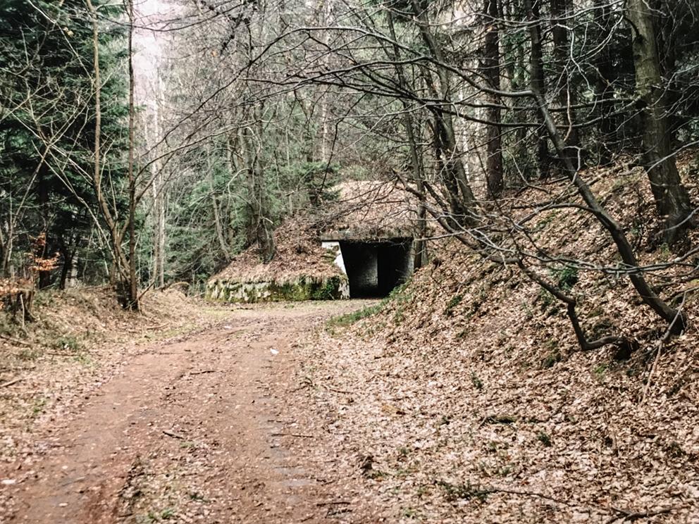 Bunkry, umocnienia, inne konstrukcje, Ludwikowice Kłodzkie. 2004 r.