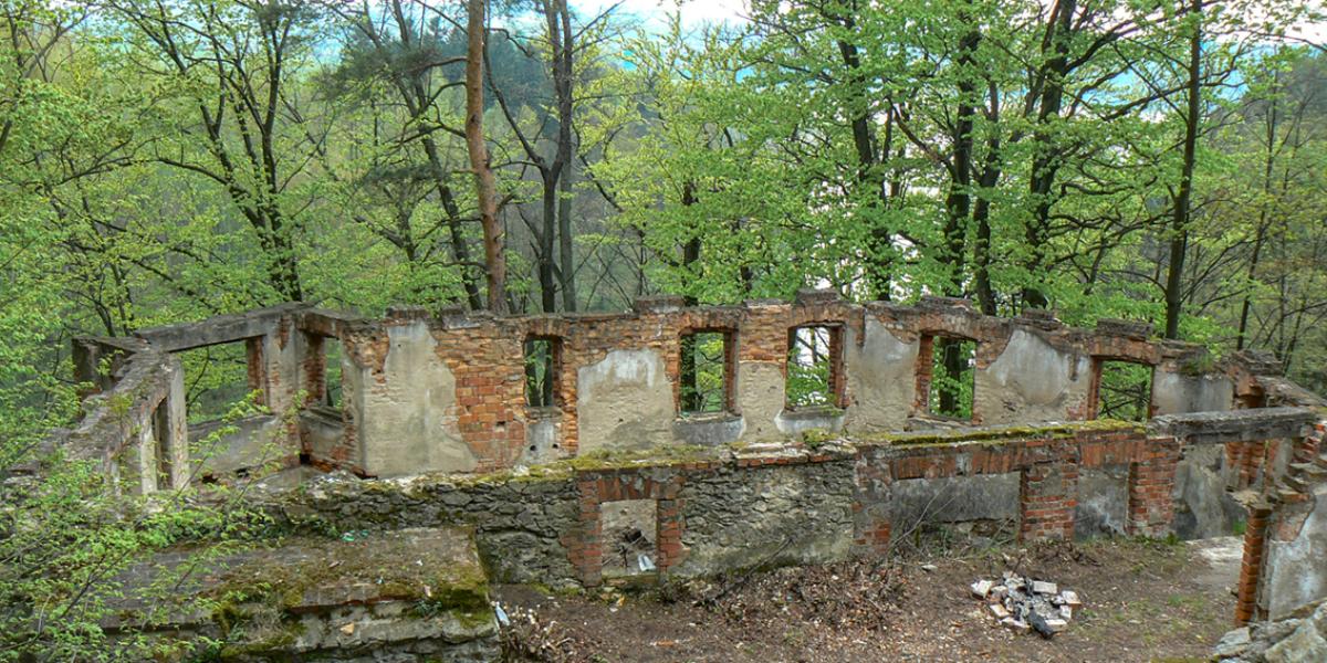 Ruiny zamku Rajsko. 2008 r.