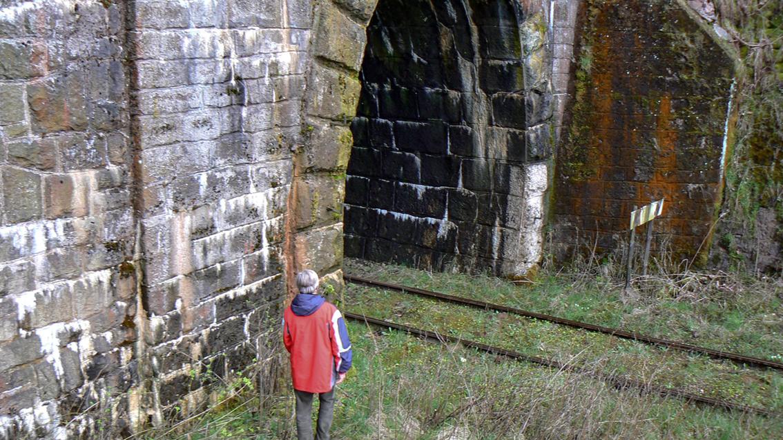 Tunele kolejowe w Świerkach Dolnych. 2008 r.