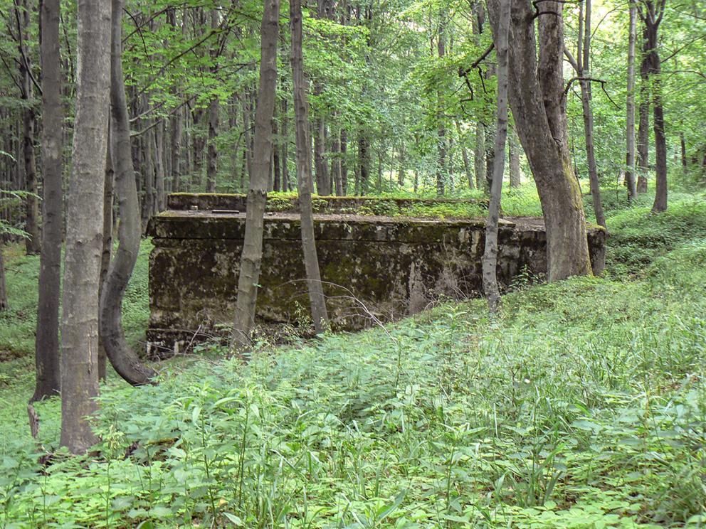 Bunkier na drodze z Osówki w kierunku Włodarza. 2007 r.