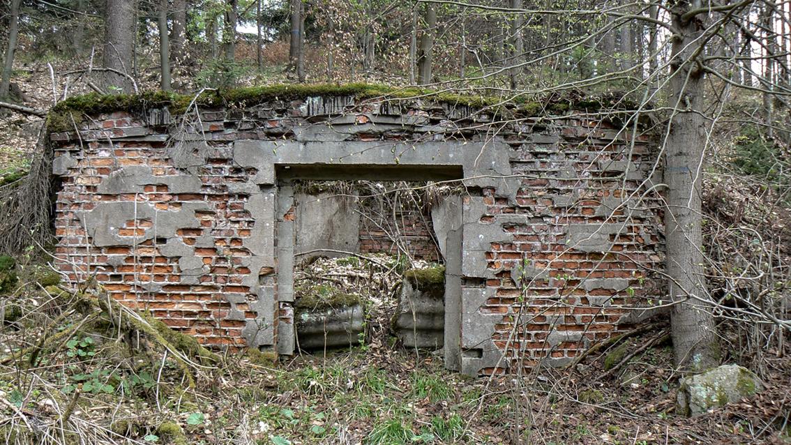 Okolice sztolni kompleksu Osówka. 2010 r.
