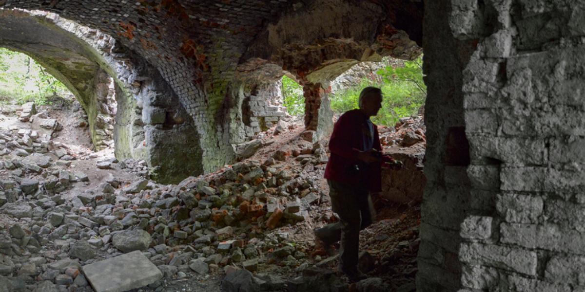Ruiny zamku Grodztwo (niem. Schloss Kreppelhof). 2015 r