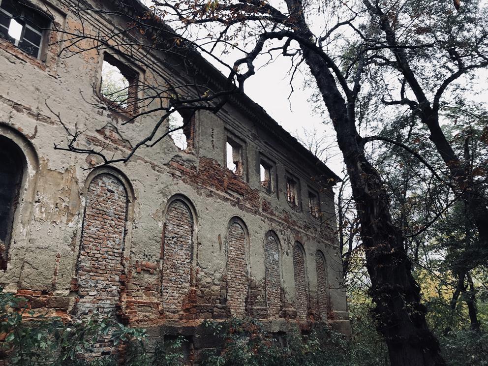 Ruiny pałacu, Pątnów. 2018 r.