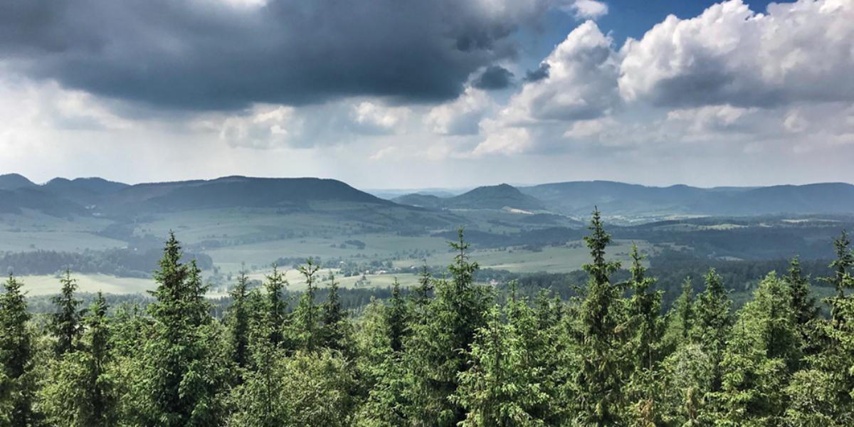 Wieża widokowa na Borowej Górze