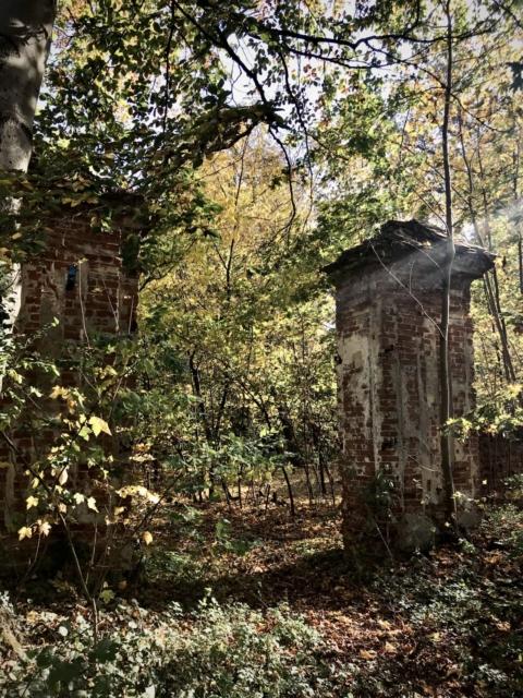 Pałac w Brzezince - pozostałości bramy. Październik 2019 r.
